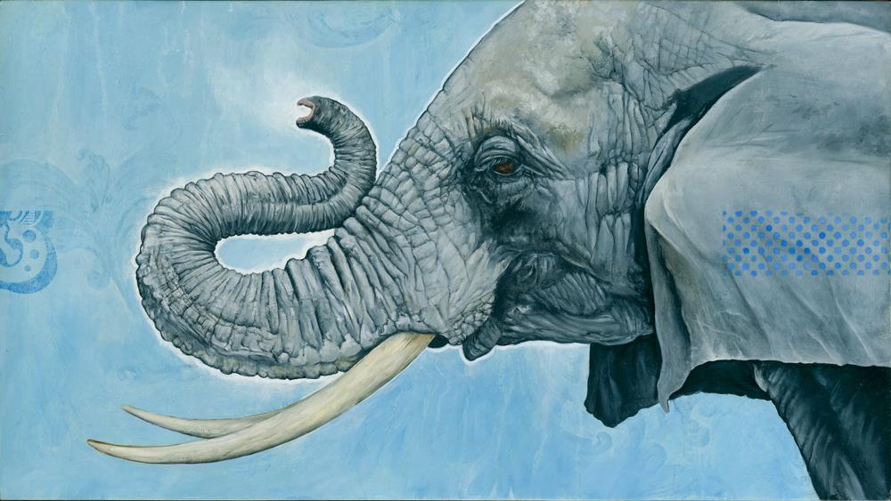 elephant-1000.jpg
